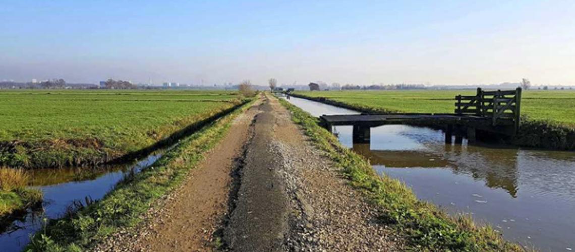 Polder Rijnenburg copyright eigen foto Telegraaf